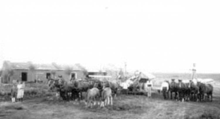 Micro Histórico - En el distrito de Coronel Suárez