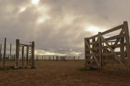 ¿Por qué la provincia de Buenos Aires perdió 3,5 explotaciones agropecuarias por día en estos 30 años?
