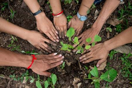 El suelo necesita medidas urgentes para promover su cuidado y una productividad sustentable