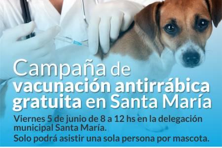 Vacunación antirrábica en Pueblo Santa María