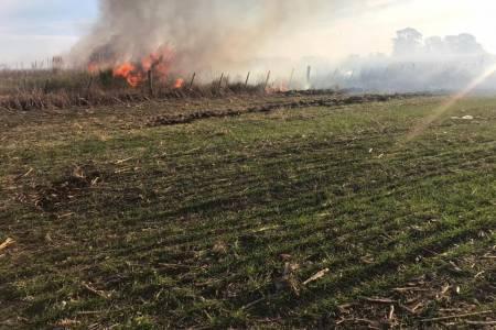 Inseguridad Rural: Denuncian la quema de campos en Arenales y Junín sembrados con trigo