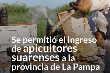 Se permitió el ingreso de apicultores suarenses a la provincia de La Pampa