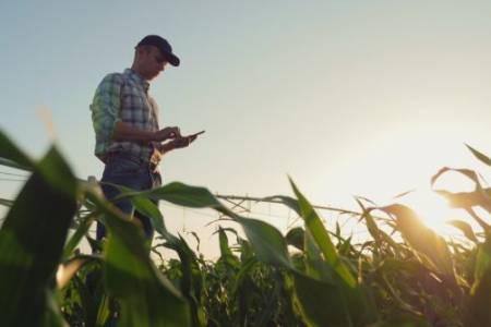 Una app que permite mejorar la producción agropecuaria usando información satelital, técnicas de big data y machine learning