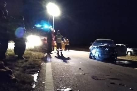 Dos autos chocaron contra vacas sueltas en la Ruta 72