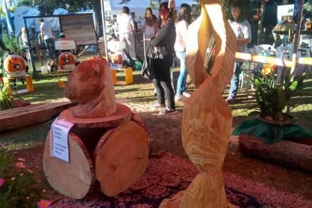'Stihl' y una propuesta innovadora, el arte en madera