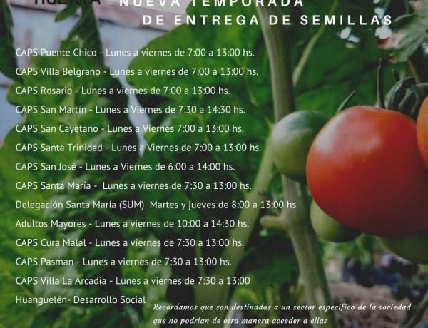 Programa ProHuerta: se entregan semillas de primavera-verano