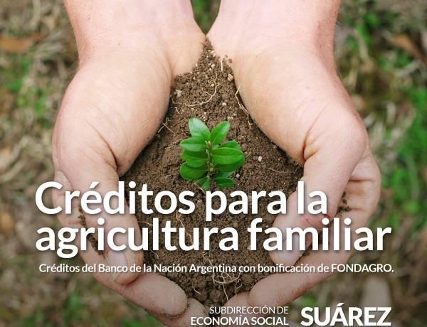 Créditos para la agricultura familiar