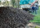 Por gestiones de la Sociedad Rural de Coronel Suárez, la firma McCain realizó una donación de 28.420 kg de papas