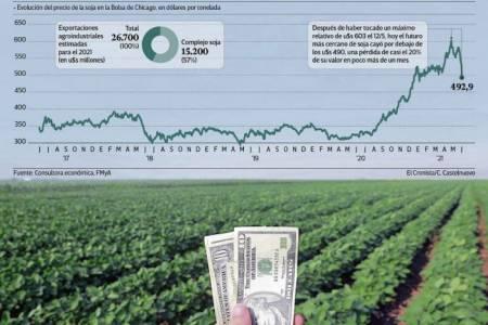 Destrucción de la soja: cayó más de 100 dólares desde su máximo del 12 de mayo